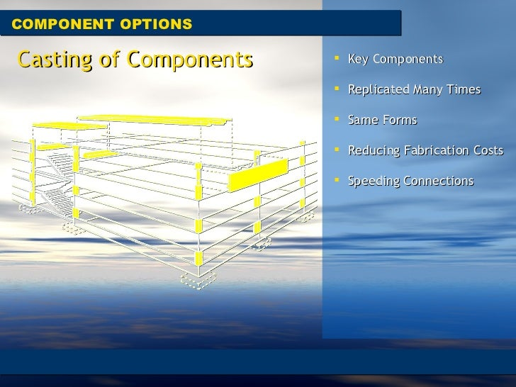 COMPONENT OPTIONS <ul><li>Key Components </li></ul><ul><li>Replicated Many Times  </li></ul><ul><li>Same Forms  </li></ul>...