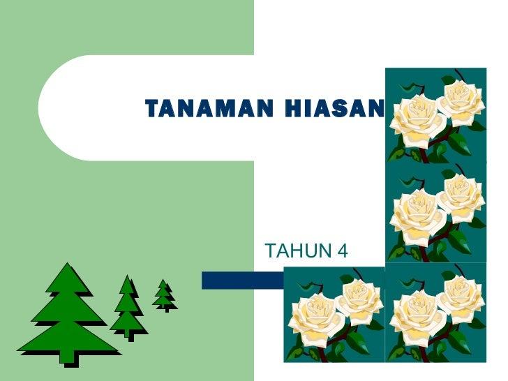 TANAMAN HIASAN      TAHUN 4