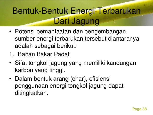 Tanaman Penghasil Bioenergi