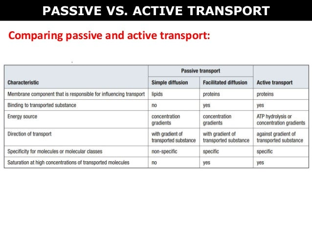 Tang 06 transport across membranes