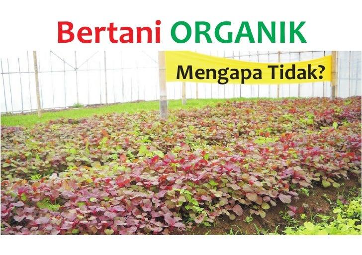 Bertani ORGANIK       Mengapa Tidak?