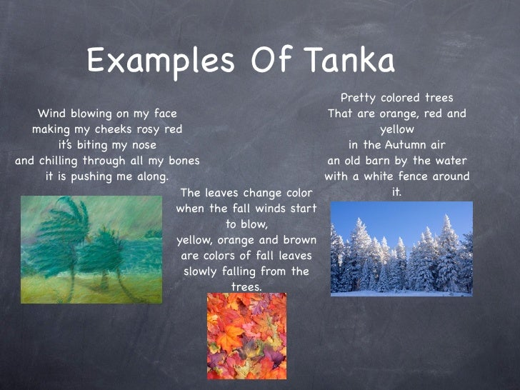 tanka at haiku tagalog halimbawa seotoolnetcom With tanka poem template