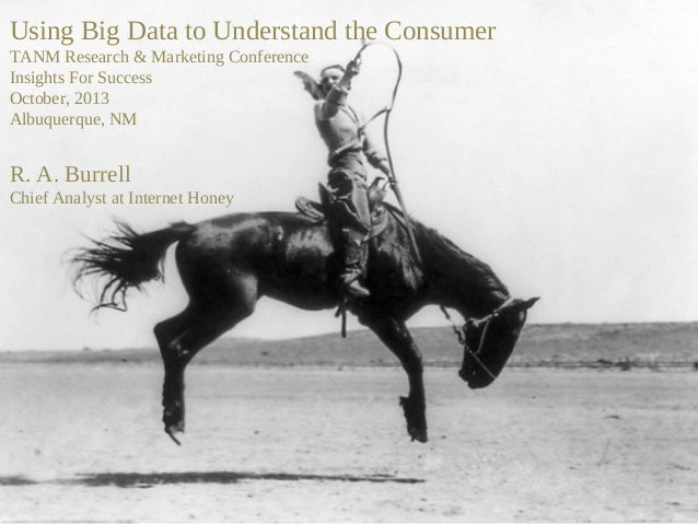 Using Big Data to Understand the Consumer TANM Research & Marketing Conference Insights For Success October, 2013 Albuquer...