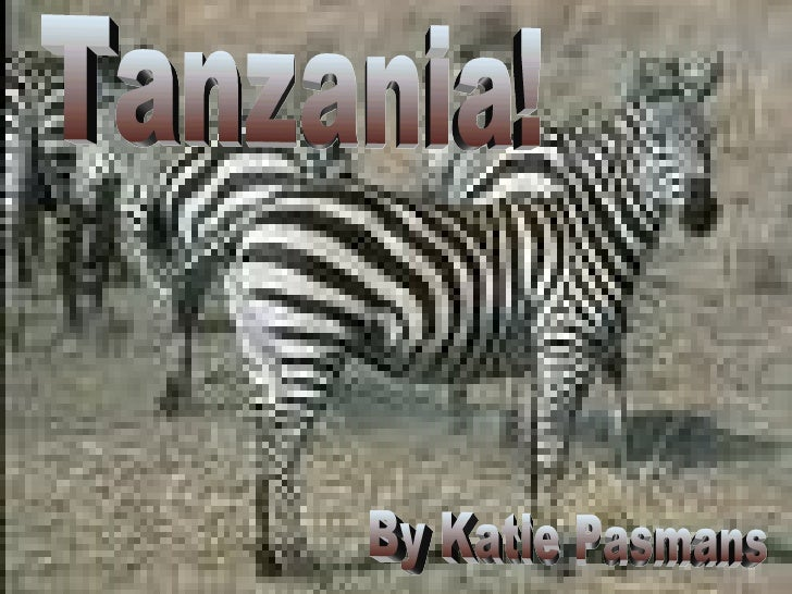 Tanzania Tanzania! By Katie Pasmans