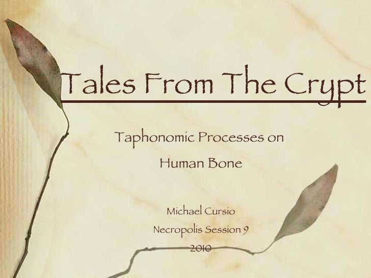 Tales From The Crypt Taphonomic Processes on  Human Bone Michael Cursio Necropolis Session 9 2010