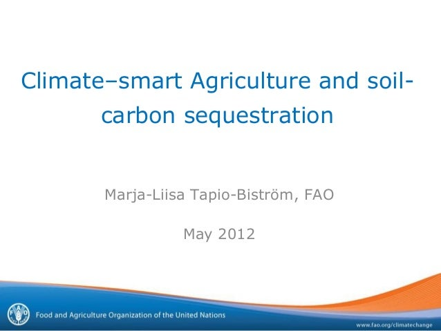 Climate–smart Agriculture and soil-       carbon sequestration       Marja-Liisa Tapio-Biström, FAO                 May 2012