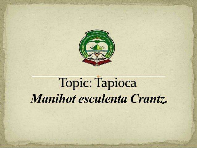 TAPIOCA (Cassava) : Manihot esculenta Crantz. Chromosome No : (2n = 2x = 36) Family: Euphorbiaceae Origin:North-Eastern Br...