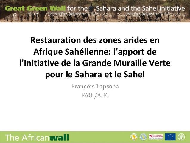 Restauration des zones arides en     Afrique Sahélienne: l'apport del'Initiative de la Grande Muraille Verte        pour l...