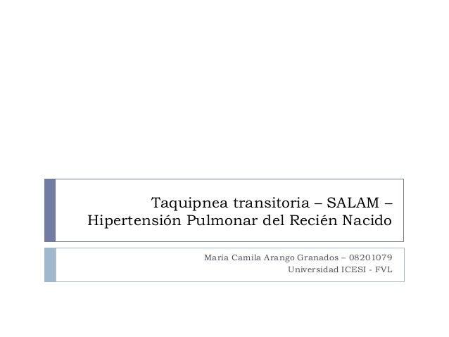 Taquipnea transitoria – SALAM – Hipertensión Pulmonar del Recién Nacido María Camila Arango Granados – 08201079 Universida...