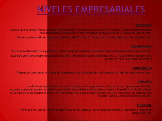 NIVELES EMPRESARIALES Slide 2