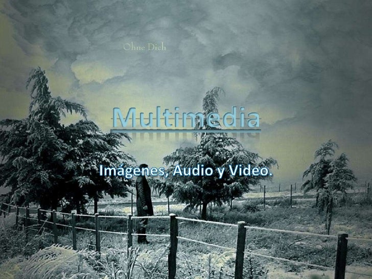 Multimedia<br />Imágenes, Audio y Video.<br />