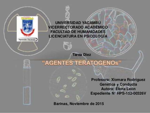 UNIVERSIDAD YACAMBÚ VICERRECTORADO ACADÉMICO FACULTAD DE HUMANIDADES LICENCIATURA EN PSICOLOGÍA Profesora: Xiomara Rodrígu...