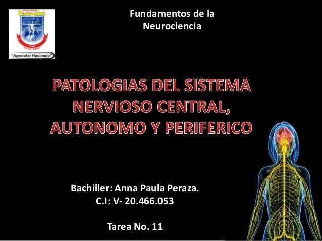 Fundamentos de la  Neurociencia  Bachiller: Anna Paula Peraza.  C.I: V- 20.466.053  Tarea No. 11