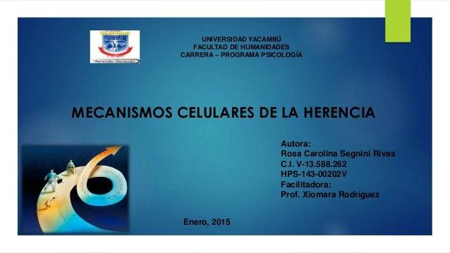 Enero, 2015 UNIVERSIDAD YACAMBÚ FACULTAD DE HUMANIDADES CARRERA – PROGRAMA PSICOLOGÍA Autora: Rosa Carolina Segnini Rivas ...