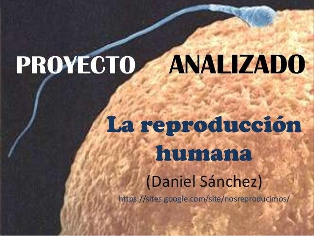 PROYECTO La reproducción humana (Daniel Sánchez) https://sites.google.com/site/nosreproducimos/ ANALIZADO