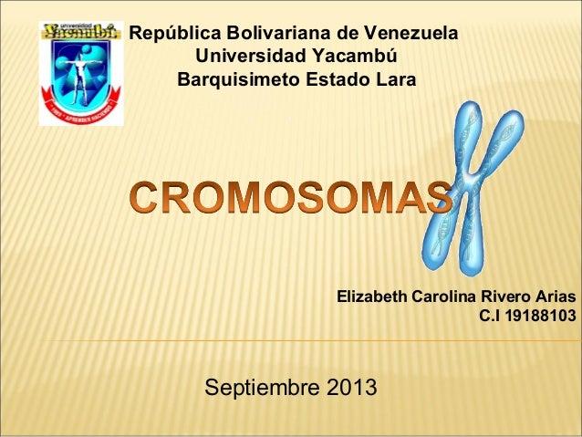 República Bolivariana de Venezuela Universidad Yacambú Barquisimeto Estado Lara Elizabeth Carolina Rivero Arias C.I 191881...