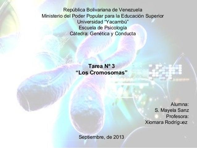 """República Bolivariana de Venezuela Ministerio del Poder Popular para la Educación Superior Universidad """"Yacambú"""" Escuela d..."""