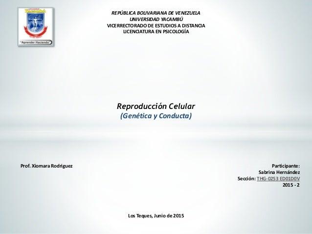 Los Teques, Junio de 2015 REPÚBLICA BOLIVARIANA DE VENEZUELA UNIVERSIDAD YACAMBÚ VICERRECTORADO DE ESTUDIOS A DISTANCIA LI...