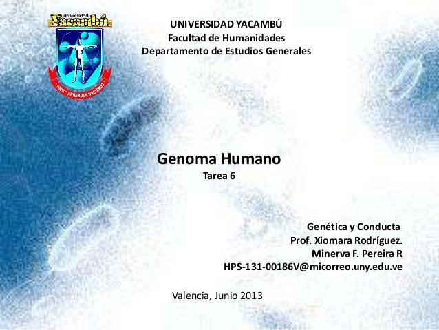 UNIVERSIDAD YACAMBÚ Facultad de Humanidades Departamento de Estudios Generales Genoma Humano Tarea 6 Genética y Conducta P...