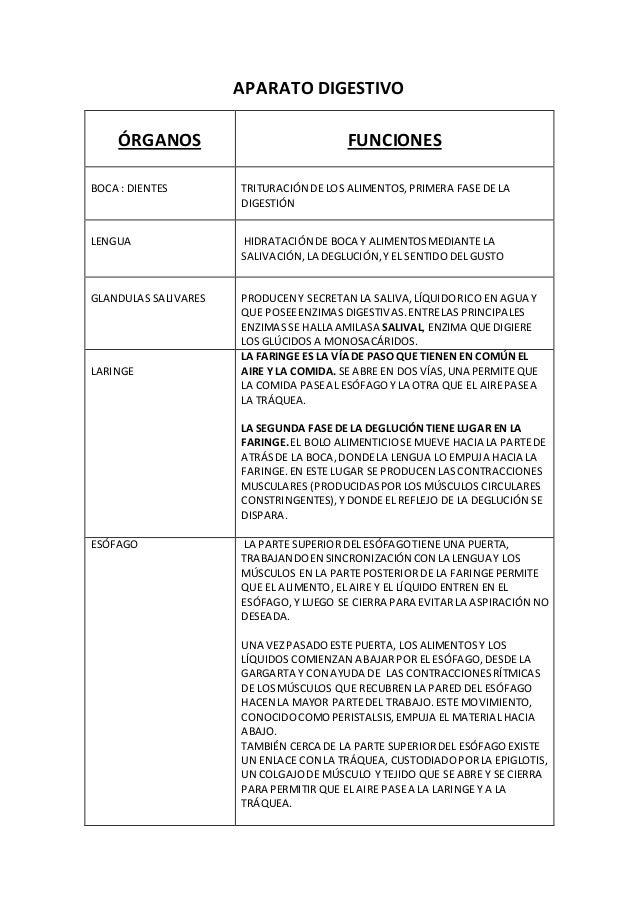 APARATO DIGESTIVO ÓRGANOS FUNCIONES BOCA : DIENTES TRITURACIÓN DE LOS ALIMENTOS,PRIMERA FASE DE LA DIGESTIÓN LENGUA HIDRAT...
