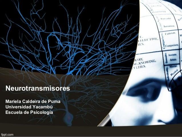 Neurotransmisores Mariela Caldeira de Puma Universidad Yacambú Escuela de Psicología