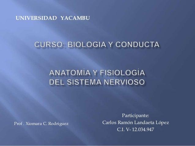 Participante: Carlos Ramón Landaeta López C.I. V- 12.034.947 UNIVERSIDAD YACAMBU Prof . Xiomara C. Rodriguez