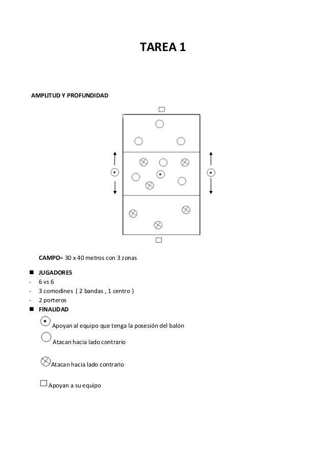 TAREA 1  AMPLITUD Y PROFUNDIDAD  CAMPO= 30 x 40 metros con 3 zonas    JUGADORES 6 vs 6 3 comodines ( 2 bandas , 1 centro...