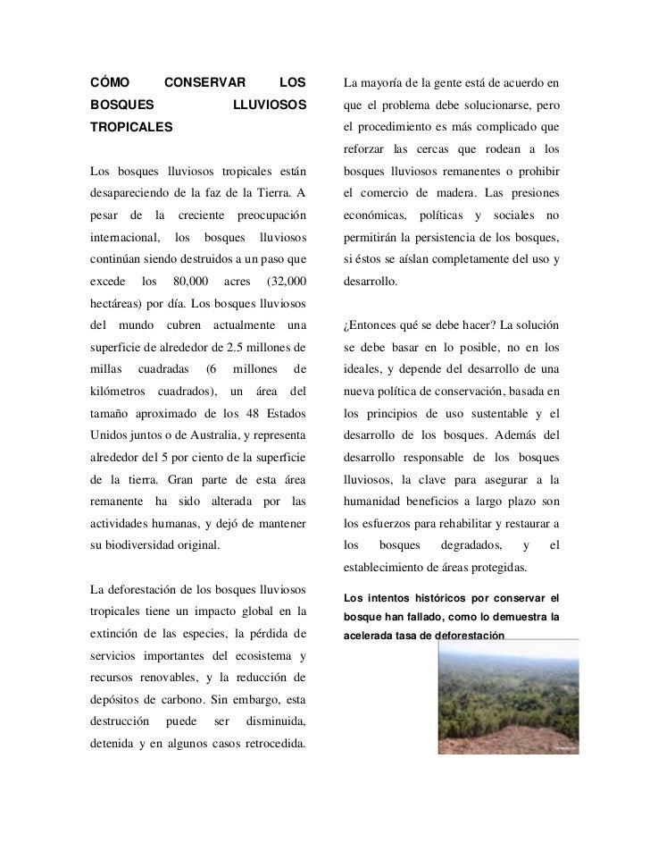 CÓMO CONSERVAR LOS BOSQUES LLUVIOSOS TROPICALES<br />Los bosques lluviosos tropicales están desapareciendo de la faz de la...