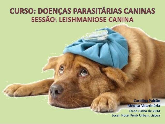 Carolina Paixão Médica Veterinária 18 de Junho de 2014 Local: Hotel Fénix Urban, Lisboa