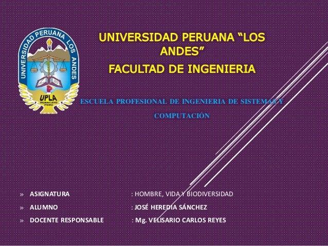 """UNIVERSIDAD PERUANA """"LOS ANDES"""" FACULTAD DE INGENIERIA ESCUELA PROFESIONAL DE INGENIERIA DE SISTEMAS Y COMPUTACIÓN » ASIGN..."""