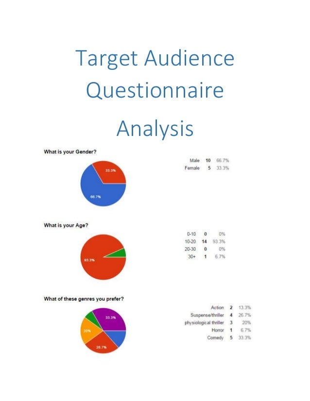 Target Audience Questionnaire Analysis
