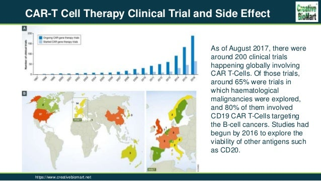 Targets Of Car T Cell Therapy