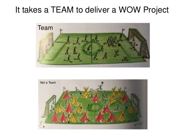Not a Team It takes a TEAM to deliver a WOW Project Team