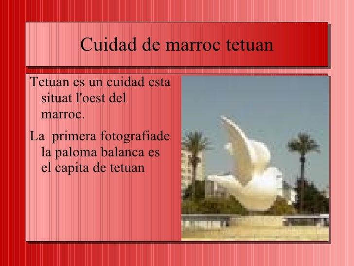 Cuidad de marroc tetuan <ul>Tetuan es un cuidad esta situat l'oest del marroc. <li>La  primera fotografiade la paloma bala...