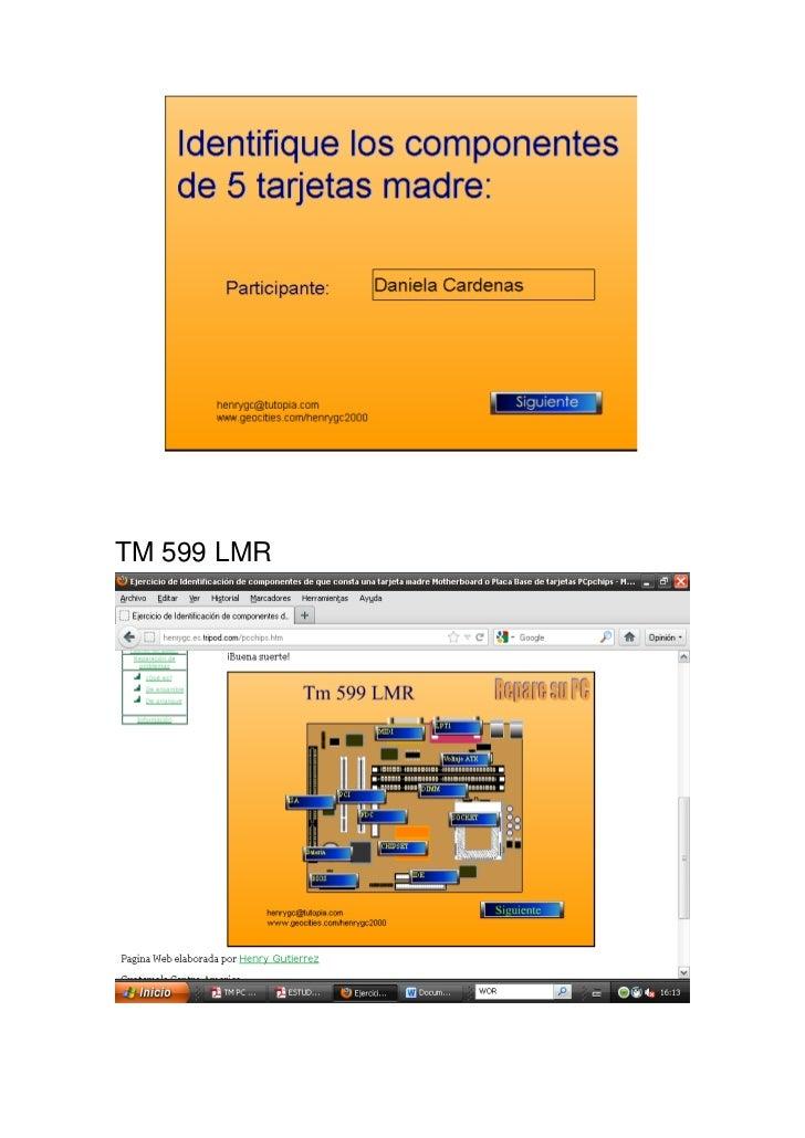 TM 599 LMR