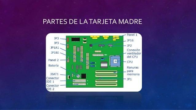 Tarjeta madre, ram & microprocesador Slide 3
