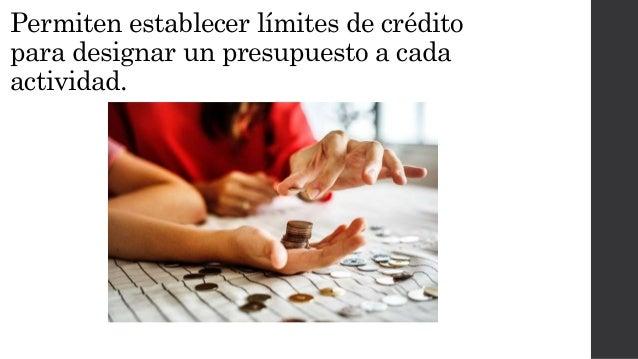 Permiten establecer l�mites de cr�dito para designar un presupuesto a cada actividad.