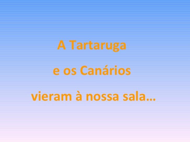 A Tartaruga   e os Canáriosvieram à nossa sala…