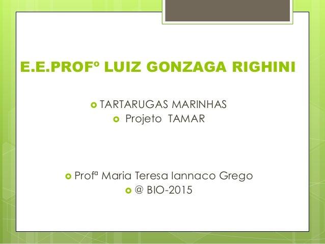 E.E.PROFº LUIZ GONZAGA RIGHINI  TARTARUGAS MARINHAS  Projeto TAMAR  Profª Maria Teresa Iannaco Grego  @ BIO-2015