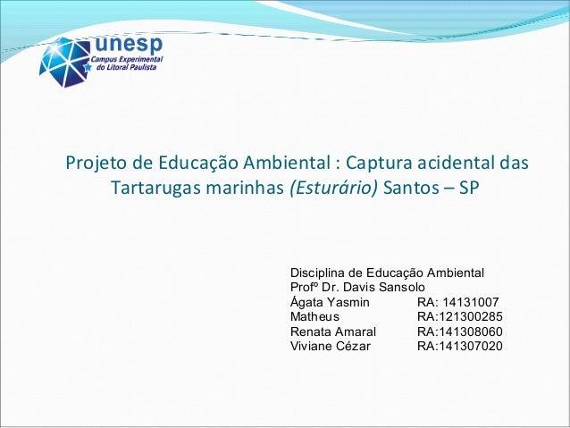 Projeto de Educação Ambiental : Captura acidental das Tartarugas marinhas (Esturário) Santos – SP Disciplina de Educação A...