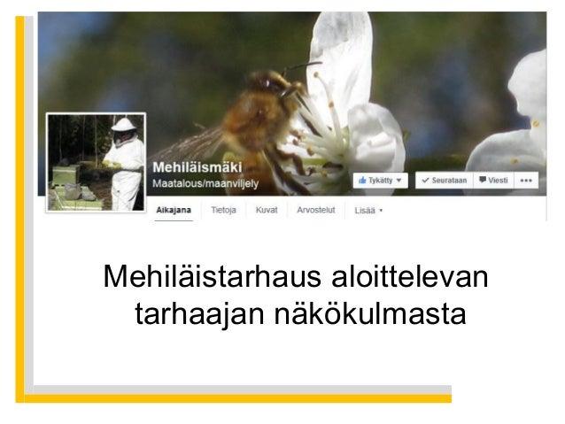 Mehiläistarhaus aloittelevan tarhaajan näkökulmasta