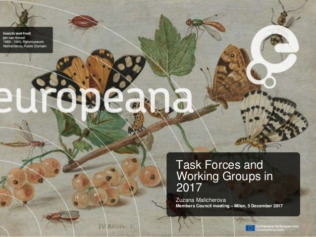 Task Forces and Working Groups in 2017 Zuzana Malicherova Members Council meeting – Milan, 5 December 2017