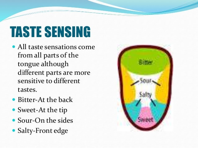 TASTE SENSING  All taste sensations come from all parts of the tongue although different parts are more sensitive to diff...