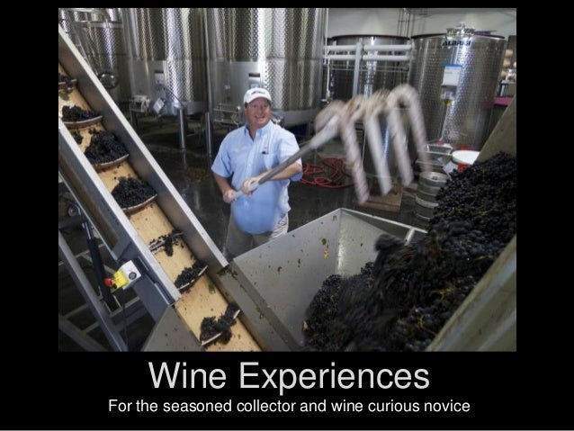Wine Experiences For the seasoned collector and wine curious novice
