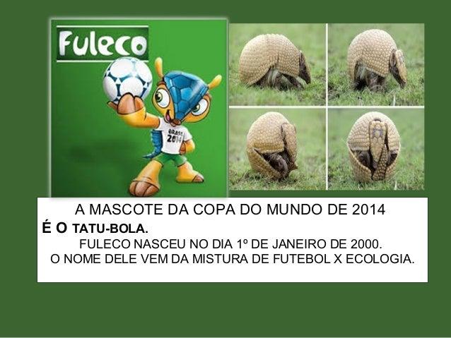 A MASCOTE DA COPA DO MUNDO DE 2014 É O TATU-BOLA. FULECO NASCEU NO DIA 1º DE JANEIRO DE 2000. O NOME DELE VEM DA MISTURA D...