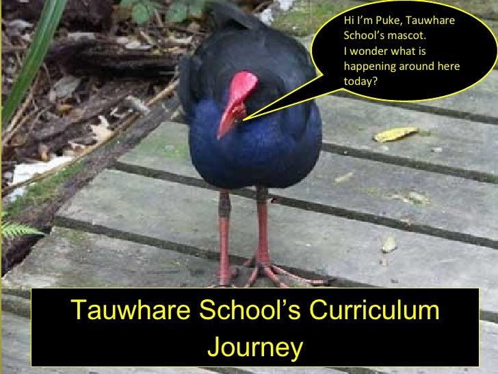 Tauwhare School's Curriculum Journey Hi I'm Puke, Tauwhare School's mascot. I wonder what is happening around here today?