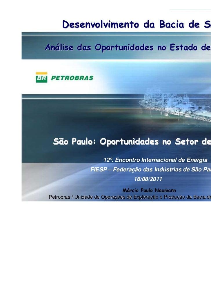 Desenvolvimento da Bacia de Santos    Análise das Oportunidades no Estado de São Paulo     São Paulo: Oportunidades no Set...