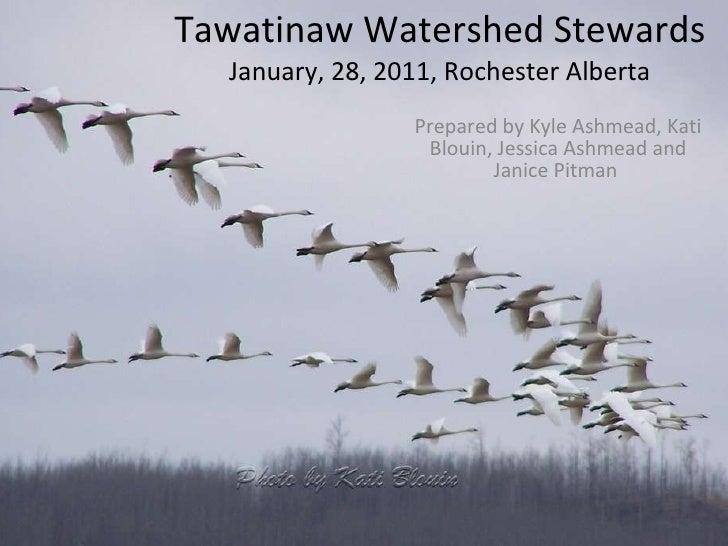 Tawatinaw Watershed Stewards January, 28, 2011, Rochester Alberta Prepared by Kyle Ashmead, Kati Blouin, Jessica Ashmead a...