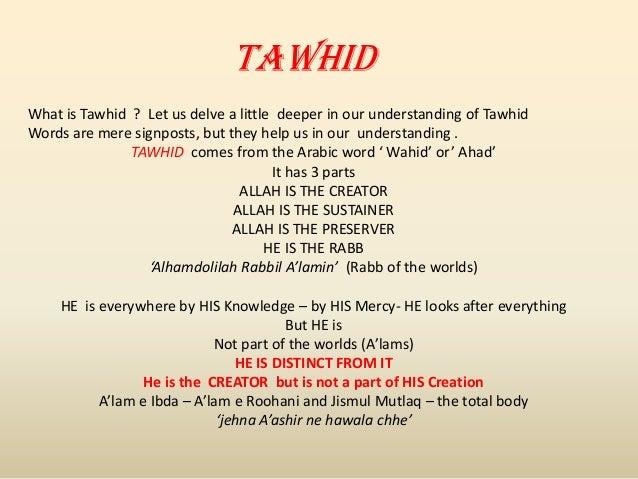Tawhid Sadik