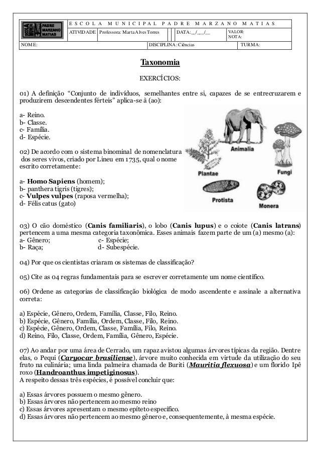 E S C O L A M U N I C I P A L P A D R E M A R Z A N O M A T I A S ATIVIDADE Professora: MartaAlves Torres DATA:__/___/__ V...